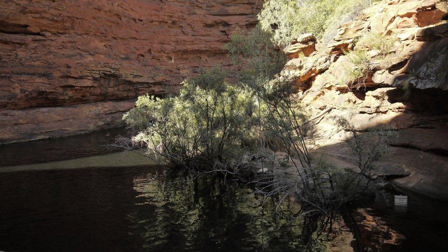 澳洲烏魯魯-國王峽谷Kings Canyon之Kings Canyon Rim-伊甸園