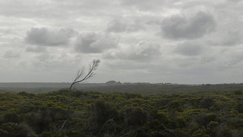 australia-melbourne-great-ocean-road-16-5050
